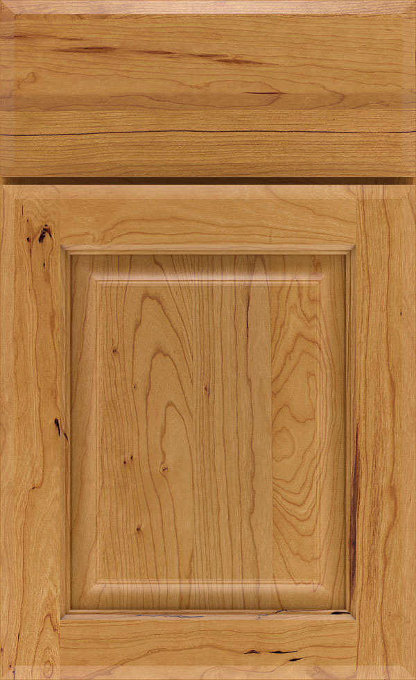 birkdale_cherry_raised_panel_cabinet_door_light