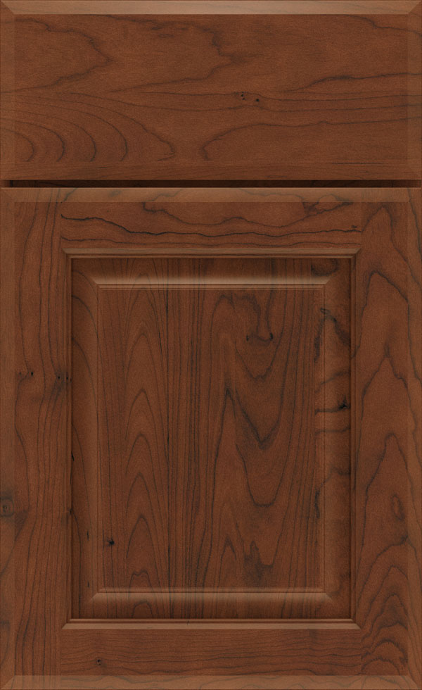 birkdale_cherry_raised_panel_cabinet_door_tundra